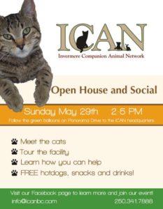 ICAN Volunteer Recruitment Poster